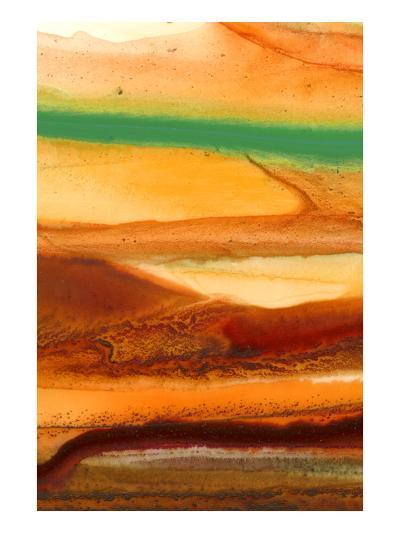 Sunset Splash D-Tracy Hiner-Premium Giclee Print