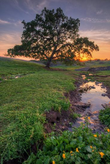 Sunset Steam at Table Mountain, Oroville California-Vincent James-Photographic Print