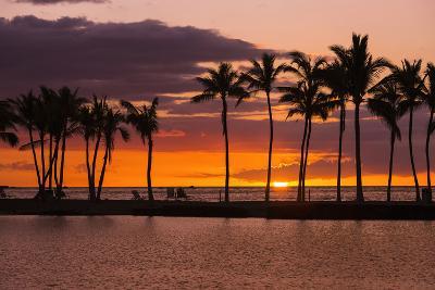 Sunset Through Silhouetted Palms at Anaehoomalu Bay, Kohala Coast, the Big Island, Hawaii, Usa-Russ Bishop-Photographic Print