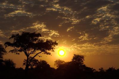 Sunset, Upper Vumbura Plains, Botswana-Anne Keiser-Photographic Print