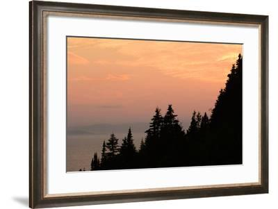 Sunset View of the Gulf of Saint Lawrence and Silhouetted Evergreen Trees-Darlyne A. Murawski-Framed Photographic Print