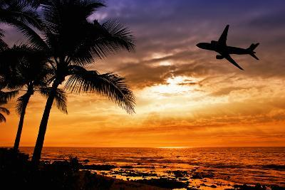 Sunset with Palm Tree and Airplane Silhouettes-krisrobin-Photographic Print