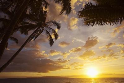 Sunset with Palm Trees in Kihei, Maui, Hawaii-Ron Dahlquist-Photographic Print