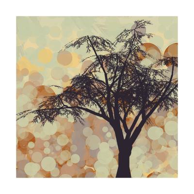 Sunshine Garden V-Irena Orlov-Art Print