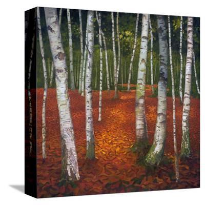 Sunshine & Shadow II--Stretched Canvas Print