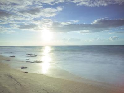 Sunshine Shores-Assaf Frank-Giclee Print