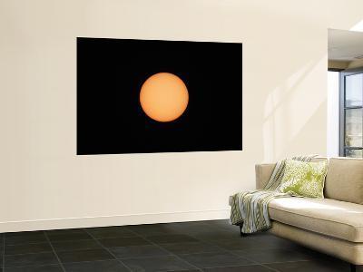 Sunspots on the Sun's Surface-Stocktrek Images-Wall Mural