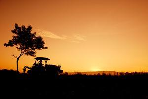 Silhouette Farmers Drive Tractors the Fields in the Morning by Sunti