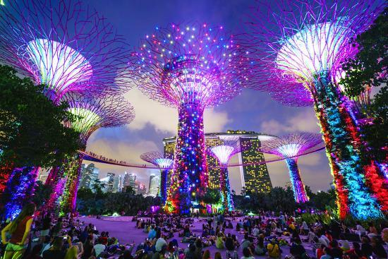 Supertree Grove in the Gardens by the Bay, a Futuristic Botanical Gardens and Park-Fraser Hall-Photographic Print