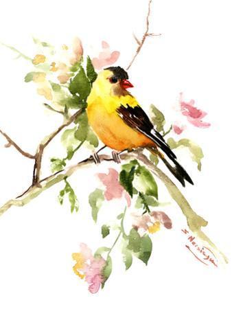 American Goldfinch Songbird by Suren Nersisyan