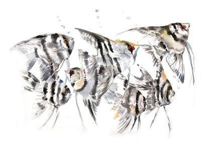 Angelfish by Suren Nersisyan