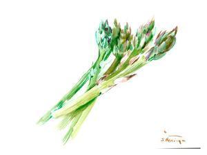 Asparagus by Suren Nersisyan