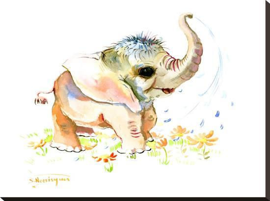 suren-nersisyan-baby-elephant
