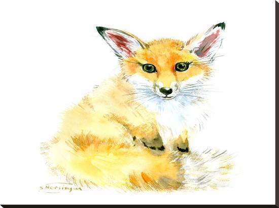 suren-nersisyan-baby-fox