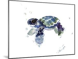 Baby Sea Turtle by Suren Nersisyan