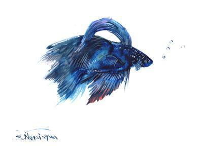 Beta Fish by Suren Nersisyan
