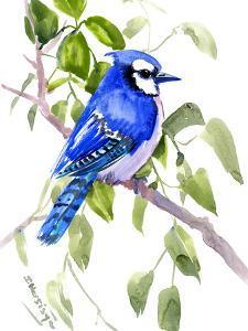 Blue Jay 6 by Suren Nersisyan