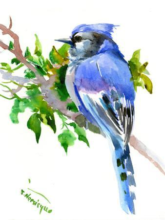 Blue Jay by Suren Nersisyan