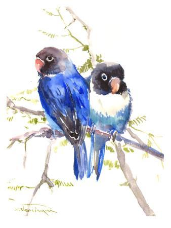 Blue Masked Lovebirds