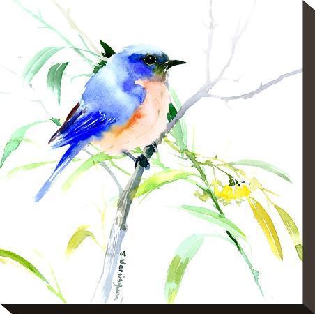 suren-nersisyan-bluebird