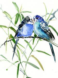 Budgies Parakeets 4 by Suren Nersisyan