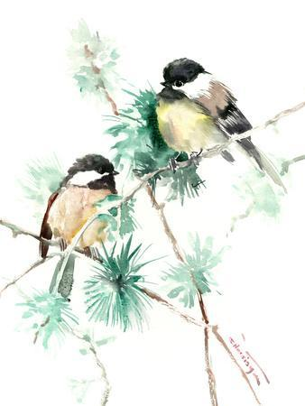 Chickadees On Pine Tree