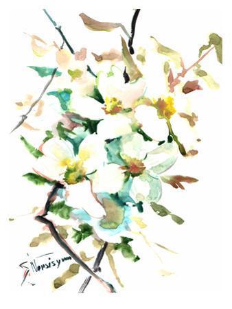 Dogwood Flowers 2