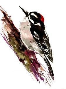 Downy Woodpecker by Suren Nersisyan