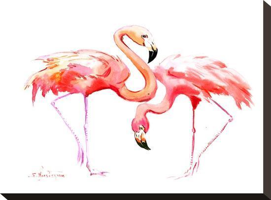 suren-nersisyan-flamingos