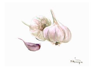 Garlic by Suren Nersisyan