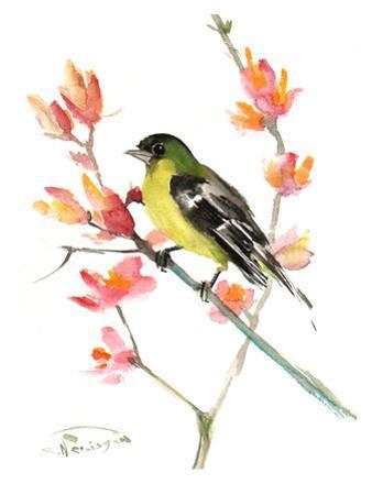 Goldfinch 3 by Suren Nersisyan