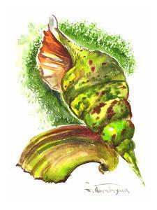Green Seashells by Suren Nersisyan