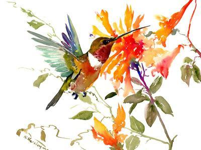 Hummingbird And Orange Flowers