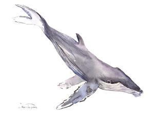 Humpback Whale by Suren Nersisyan