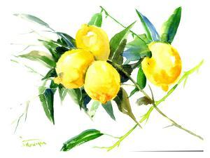 Lemon Bunch by Suren Nersisyan