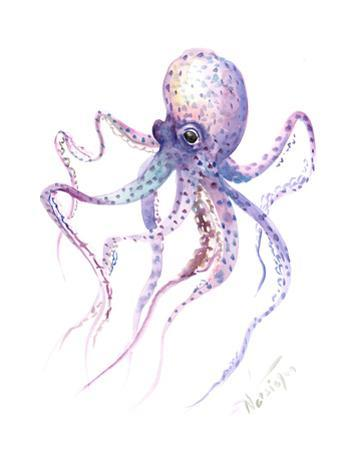 Octopus 5