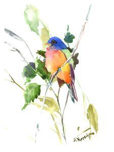 Painted Bunting by Suren Nersisyan