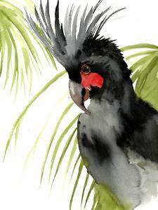 Palm Cockatoo 1 by Suren Nersisyan
