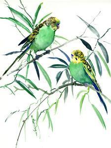 Parakeets Budgies by Suren Nersisyan
