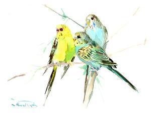 Parakeets by Suren Nersisyan