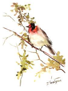 Red-Headed_Warbler by Suren Nersisyan