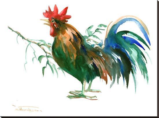 suren-nersisyan-rooster2