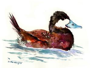 Ruddy Duck by Suren Nersisyan