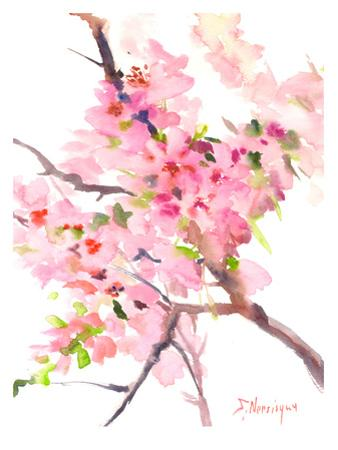 Sakura by Suren Nersisyan