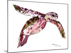 Sea Turtle 9 by Suren Nersisyan