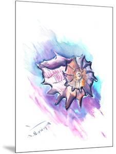 Seashell by Suren Nersisyan