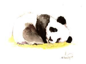 Sleeping Baby Panda by Suren Nersisyan