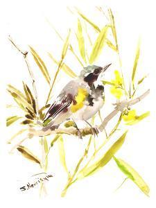 Warbler by Suren Nersisyan