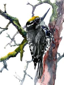 Woodpecker 2 by Suren Nersisyan