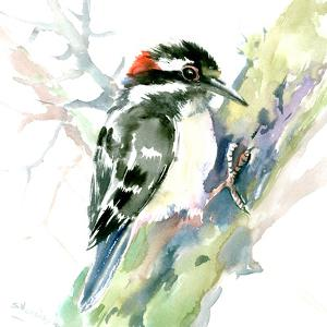 Woodpecker by Suren Nersisyan